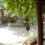 Rachada gardens