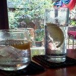 Lunch Time Gin and Tonic at Radchada Garden Cafe