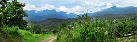 Beautiful Scenery in Rural Chiang Mai Province