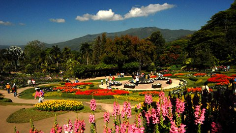 Stunningly beautiful Mae Fah Luang garden in Chiang Rai Province