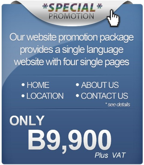 Website Design Promotion - $319 for a basic website by Bon Tong Productions