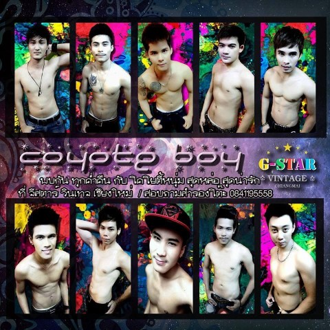 G-star  Vintage Chiang Mai - Gay Club with Coyote boys