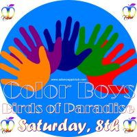 colour boys - birds of Paradise at Adams Apple club