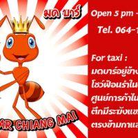 Mod Bar - Gay Beer Bar in Chiang Mai - logo and business card
